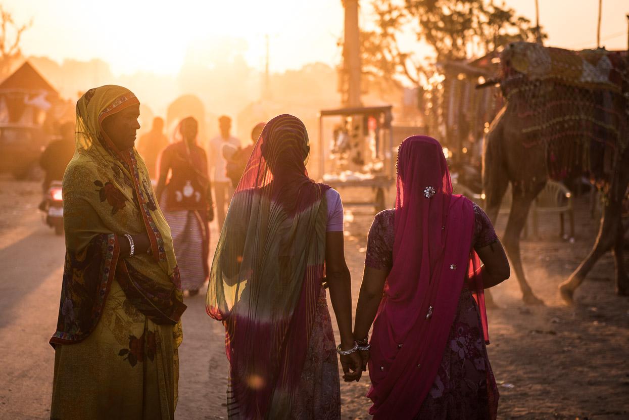 pushkar camel fair women sari