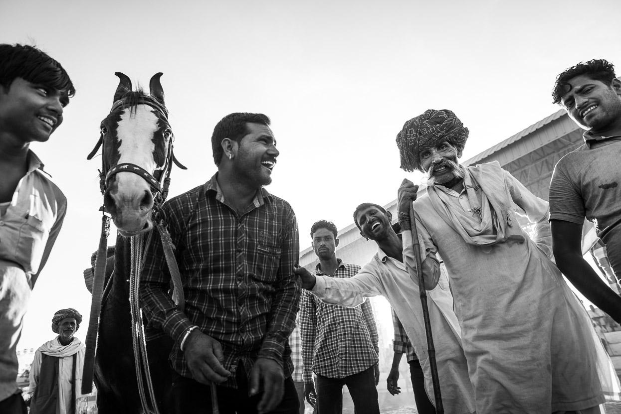 horse men pushkar camel fair