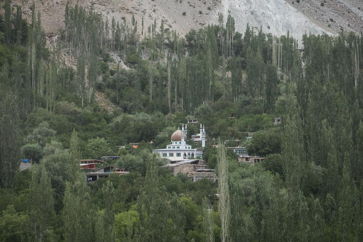 Mosque in trees along srinagar leh highway